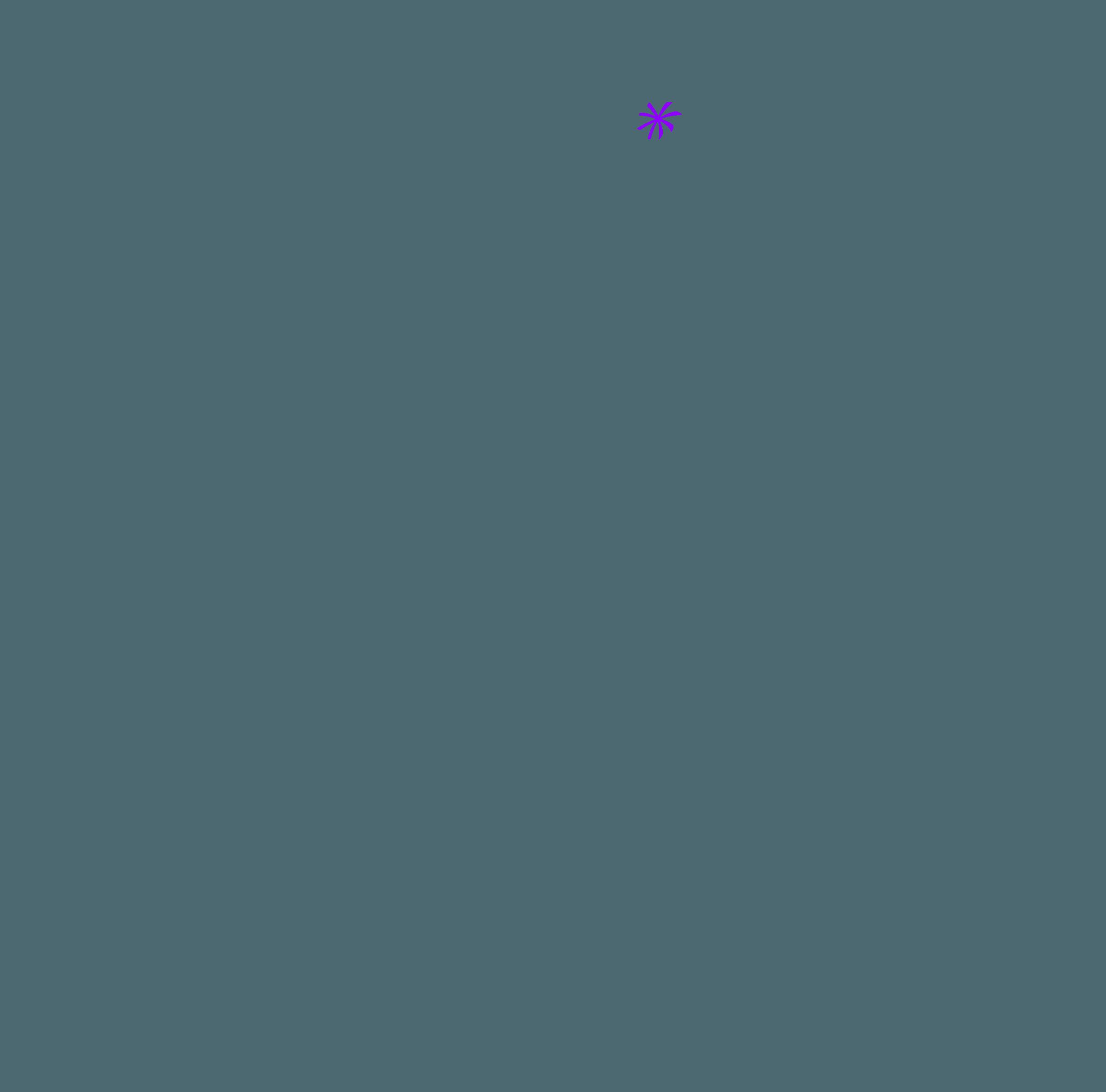 étoile violette